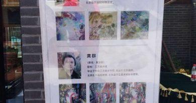 《驰神运思》——彭琦、黄群、张保国(芾铭)艺术作品展北京开展